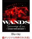 【楽天ブックス限定先着特典】WANDS Streaming Live ~BURN THE SECRET~【Blu-ray】(チケットホルダー) [ WANDS ]・・・