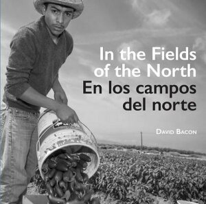 In the Fields of the North/En Los Campos del Norte SPA-IN THE FIELDS OF THE NORTH [ David Bacon ]