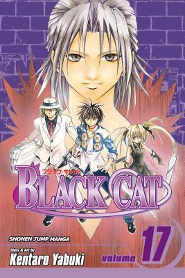 Black Cat, Vol. 17画像