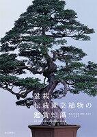 盆栽・伝統園芸植物の鑑賞知識