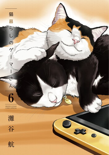猫暮らしのゲーマーさん(6)