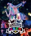 "10th Anniversary The Grand Final Live ""ARCH"" 【Blu-ray】 [ KOTOKO ]"