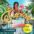 Tropical BEACH PARTY! Best of Summer Anthem! mixed by DJ SHOTA