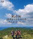 BEGIN 25周年記念音楽公園 〜石垣島で会いましょう〜【Blu-ray】 [ BEGIN ]