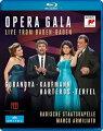 【輸入盤】『オペラ・ガラ〜ライヴ・フロム・バーデン=バーデン』 ヨナス・カウフマン、ブリン・ターフェル、アニヤ・ハルテロス、エカテリーナ・