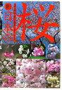 「新日本の桜」