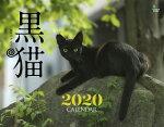 黒猫カレンダー 壁掛け(2020)