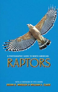 A Photographic Guide to North American Raptors PHOTOGRAPHIC GT NORTH AMER RAP [ Brian K. Wheeler ]