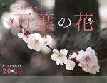 万葉の花カレンダー 壁掛け(2020)