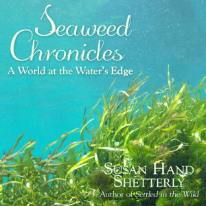 Seaweed Chronicles: A World at the Water�s Edge SEAWEED CHRON D [ Susan Hand Shetterly ]