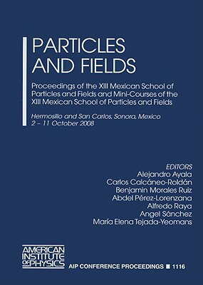 Particles and Fields: Proceedings of the XIII Mexican School of Particles and Fields and Min...