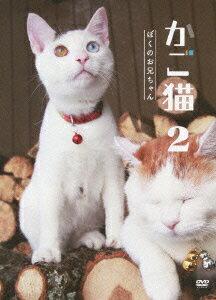 【送料無料】かご猫2 ぼくのお兄ちゃん