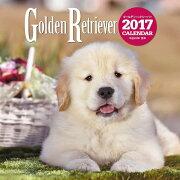 2017年大判カレンダー ゴールデン・レトリーバー