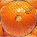 カラオケで人気のラブソング名曲 「グリーン」の「オレンジ」を収録したCDのジャケット写真。