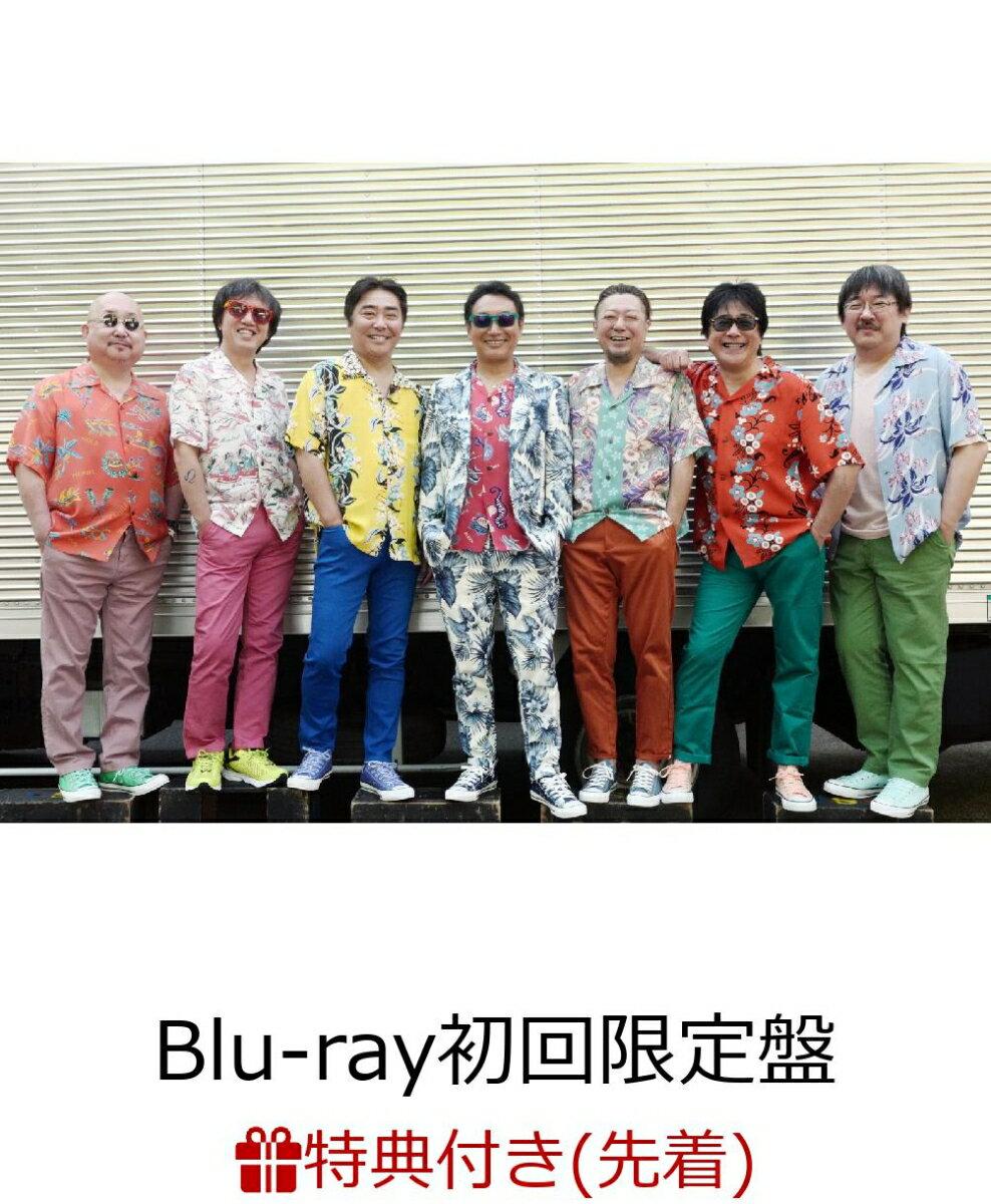 "【先着特典】The open air live ""High & High 2019""(Blu-ray初回限定盤)(特製ポーチ付き)【Blu-ray】"