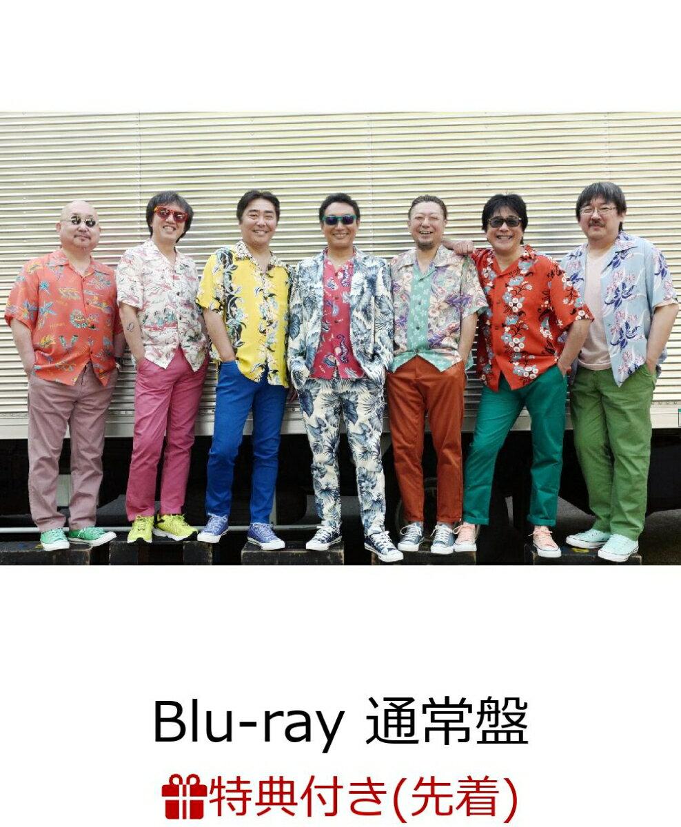 """【先着特典】The open air live """"High & High 2019""""(Blu-ray 通常盤)(特製ポーチ付き)【Blu-ray】画像"""