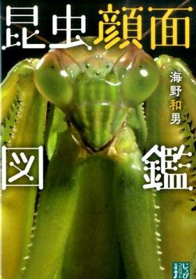 昆虫顔面図鑑