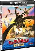ヒックとドラゴン 聖地への冒険【4K ULTRA HD】
