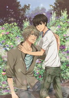 SUPER LOVERS 2 第4巻【Blu-ray】