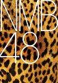 19thシングル「タイトル未定」 (通常盤B CD+DVD)