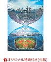 【楽天ブックス限定先着特典】TUBE LIVE AROUND SPECIAL2019-2020 at stadium & at home(初回仕様限定盤)(ミニタオル) [ TUBE ]・・・