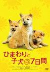 ひまわりと子犬の7日間 [ 堺雅人 ]