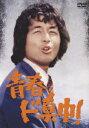 【送料無料】青春ド真中! DVD-SET [ 中村雅俊 ]