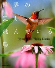 世界の美しい飛んでいる鳥