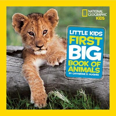 洋書, BOOKS FOR KIDS Little Kids First Big Book of Animals LITTLE KIDS 1ST BBO ANIMALS National Geographic Little Kids First Big Books Catherine D. Hughes