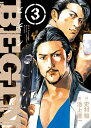 BEGIN (3) (ビッグ コミックス) [ 史村 翔 ]