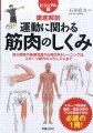 ビジュアル版 徹底解剖 運動に関わる筋肉のしくみ