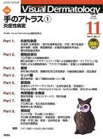 Visual D. 2018年11月号Vol.17No.11