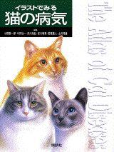 【楽天ブックスならいつでも送料無料】イラストでみる猫の病気 [ 小野憲一郎 ]