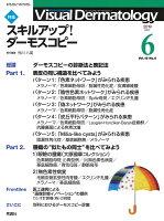 Visual D. 2019年6月号 Vol.18 No.6