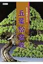作業実例から学ぶ五葉松盆栽 プロの作業実例で「こんな時どうする」がよく分かる (KBムック)