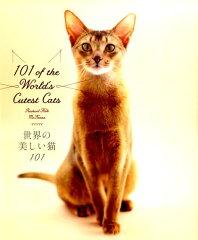 【楽天ブックスならいつでも送料無料】世界の美しい猫101 [ レイチェル・マッケナ ]