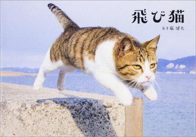 【楽天ブックスならいつでも送料無料】飛び猫 [ 五十嵐健太 ]