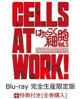 【全巻購入特典対象】はたらく細胞 5(完全生産限定版)【Blu-ray】