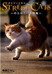 【楽天ブックスならいつでも送料無料】Street cats [ 中川こうじ ]
