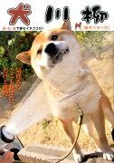 犬川柳 [柴犬バカ一代]