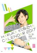 (卓上)AKB48 兒玉遥 カレンダー 2017【楽天ブックス限定特典付】