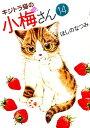 キジトラ猫の小梅さん(14) (ねこぱんちコミックス) [ ほしのなつみ ]