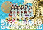 チームしゃちほこPHOTOカレンダーBOOK 2015