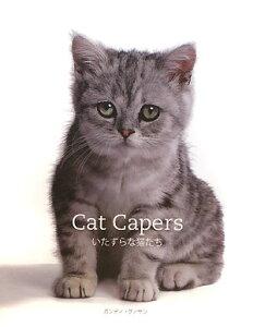 【送料無料】Cat capersいたずらな猫たち