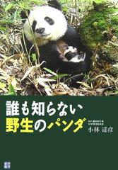 【送料無料】誰も知らない野生のパンダ [ 小林達彦 ]
