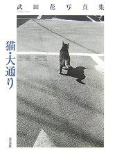 【楽天ブックスならいつでも送料無料】猫・大通り [ 武田花 ]