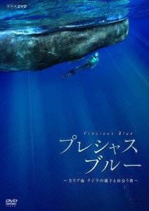 【楽天ブックスならいつでも送料無料】プレシャス・ブルー カリブ海・クジラの親子と出会う旅 [...