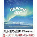 【楽天ブックス限定先着特典】aurora arc (初回限定盤B CD+Blu-ray) (A5クリアファイル付き) [ BUMP OF CHICKEN ]