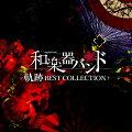 軌跡 BEST COLLECTION+ (MUSIC VIDEO盤 CD+2DVD+スマプラ)
