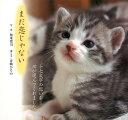 【バーゲン本】まだ恋じゃないー猫...